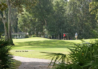 Mini Pro Golf Tours Florida