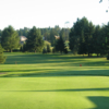 A sunny view from Guildford Golf and Country Club