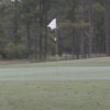 A view of a green at Conway Golf & Country Club