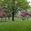 A spring view from Shiloh Park Golf Course