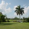 A view from a tee at Hibiscus Golf Club