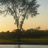 Sunrise at Sparrow Lakes Golf Club - Heron Course