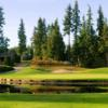 A view of a hole with water coming into play at Shuswap Lake Estates Golf Club