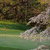 A spring view from Gull Lake View Golf Club - West