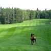 A view of a fairway at Waskesiu Golf Course