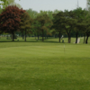 A view of a green at Ridgetown Golf and Country Club