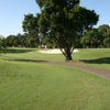 A sunny day view of a hole at Dunedin Golf Club