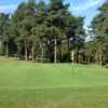 Scenic view of the 6th green and stunning trees at Westerham Golf Club