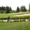 A view of green #17 at Munoscong Golf Club