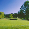 A view of a green at Meriwether National Golf Club