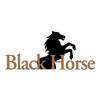 BlackHorse at Bayonet/Black Horse Golf Course - Public Logo